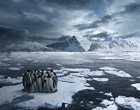 RKF Rockford / Pinguinos