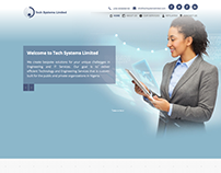 Tech System Limited Website Redesign