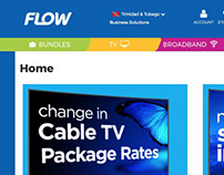 Discover Flow Corporate Website