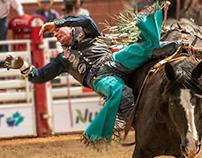 La dure vie d'un cowboy de rodéo… !