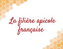 """Infographic - """"La filière apicole française"""" - MBT"""