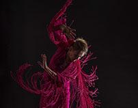 Dance / Baile Flamenco
