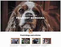 Animal Shelter Website Design Demo