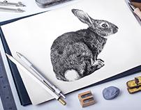 Drawing as photo  |  Рисунок как фото