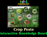 Crop Pests Fun Board