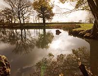 Surreal pond
