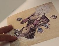 Metamorfish II_ Libro de edición limitada