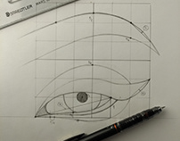 Constructing Ideal Eye Steb By Step