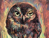 O Pal Owl