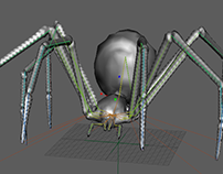 Spider Rig/Animation