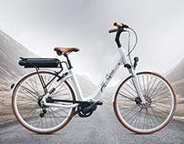 Swan ebike design
