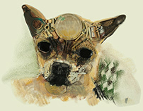 2.5D Paintings - Animals