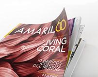 Rediseño Revista Amarilo