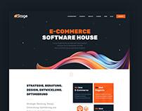 ecoomerce software house
