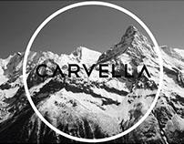 / Carvella • Banner