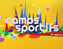Camps sportifs - 2016