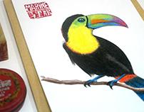 Postcards - Illustrations