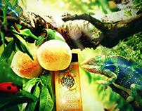 Tutti Frutti Key Visual/Concept