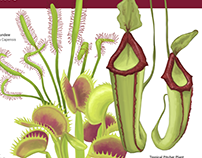 Plant Informational Panel