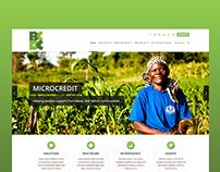 Buseesa Community Development Centre   Web Design
