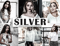 Free Silver Mobile & Desktop Lightroom Preset