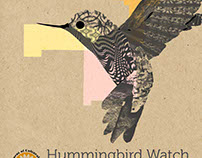 Hummingbird Watch