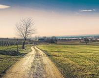 Beautiful Franconia