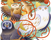 CHILDREN'S RIDDLE HOLY OWLY!