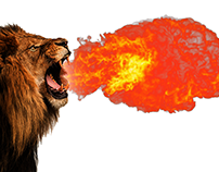 Lion With Fire