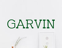 Garvin - FreeSlab Serif Demo Font