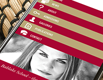 Bablake Website Design