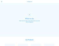 Collegepond - main website wireframes