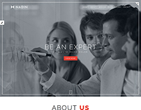 Nadin - Corporate Responsive One Page HTML Template