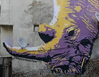 Mural painting - Rhino