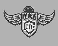 Logo design for SapSan