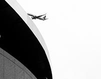 Bird-Plane