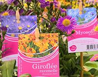 Etiquettes plantes - Vive le Végétal