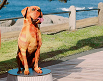Mirinda - The Dog