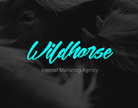 Landing Page for Internet Marketing Agency