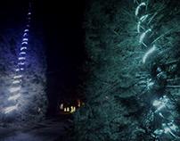 Christmas at Blenheim Palace - Singing Trees