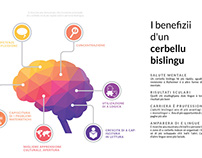 Infographics - Benefits of a bilingual brain