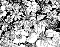 Summer Strawberries Ink Illustration