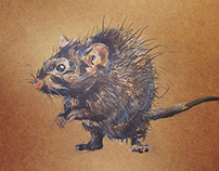 [Urbanization] Rat Series