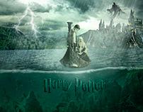 Harry Potter   DH3 Montaje
