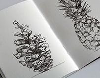 pen sketches no. 1