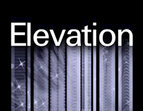 Elevation business conference - logo design