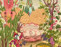 illustrations 2
