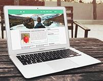 Blog Template Design