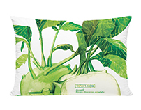 Kohlrabi watercolor prints for farm
