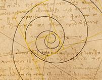Da Vinci's Geometry / Graphic Design